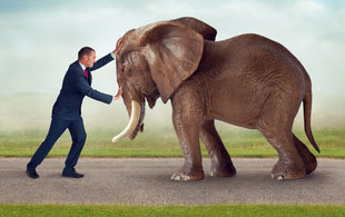 man in suit pushing against elephant